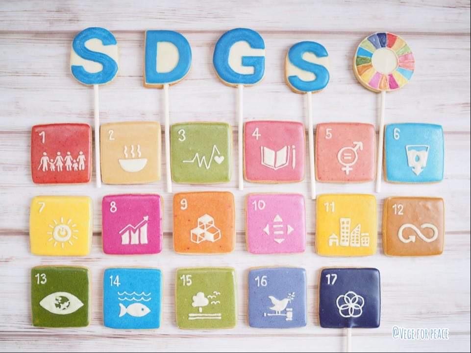 メディア掲載・SDGsヴィーガンケーキが朝日新聞、ESSEなどに掲載されました。